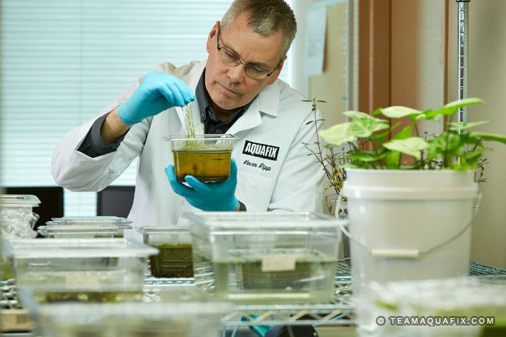 wastewater-lab-testing-lagoon