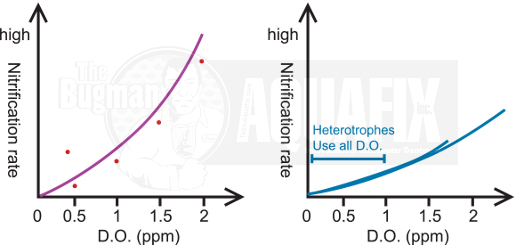 Dissolved Oxygen and Ammonia in Wastewater