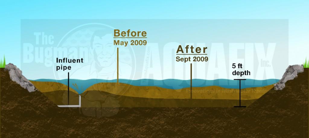 wastewater lagoon sludge reduction plan