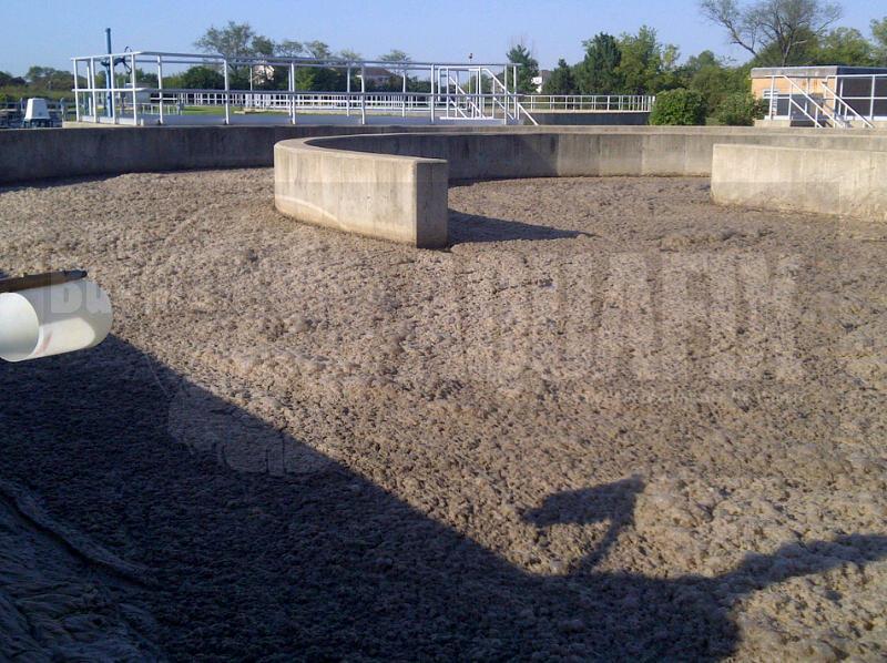Wastewater M. Parvicella Foam