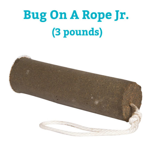 Bug On A Rope Jr.