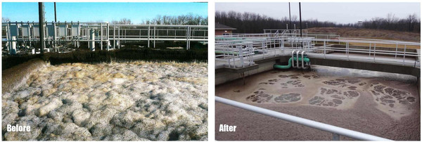Municipal-Wastewater-Treatment-Plant-with-Surfactant-Foam