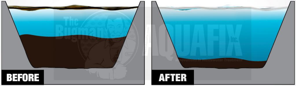 lagoon sludge reducer