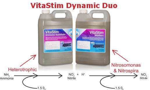 nitrification process using VitaStim Dynamic Duo