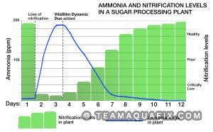graph portraying nitrifying growth in sugar processing plant