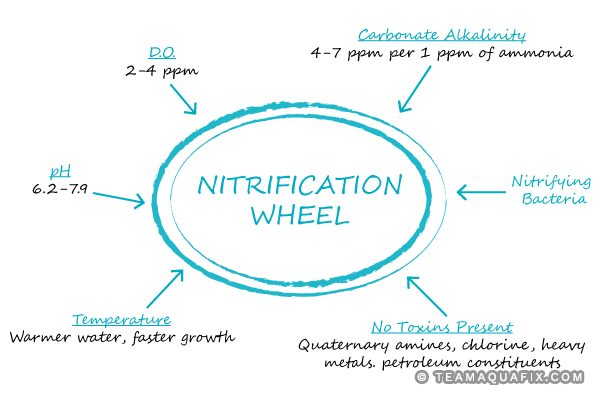 Excerpt from 2018 Nitrification Webinar