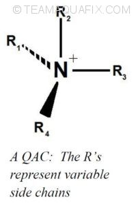 QAC-molecule