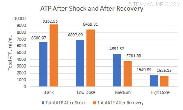 atp-after-shock-recovery