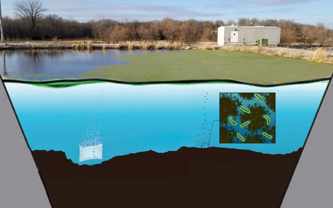 Getting Rid of Lagoon Sludge – 2018 Webinar