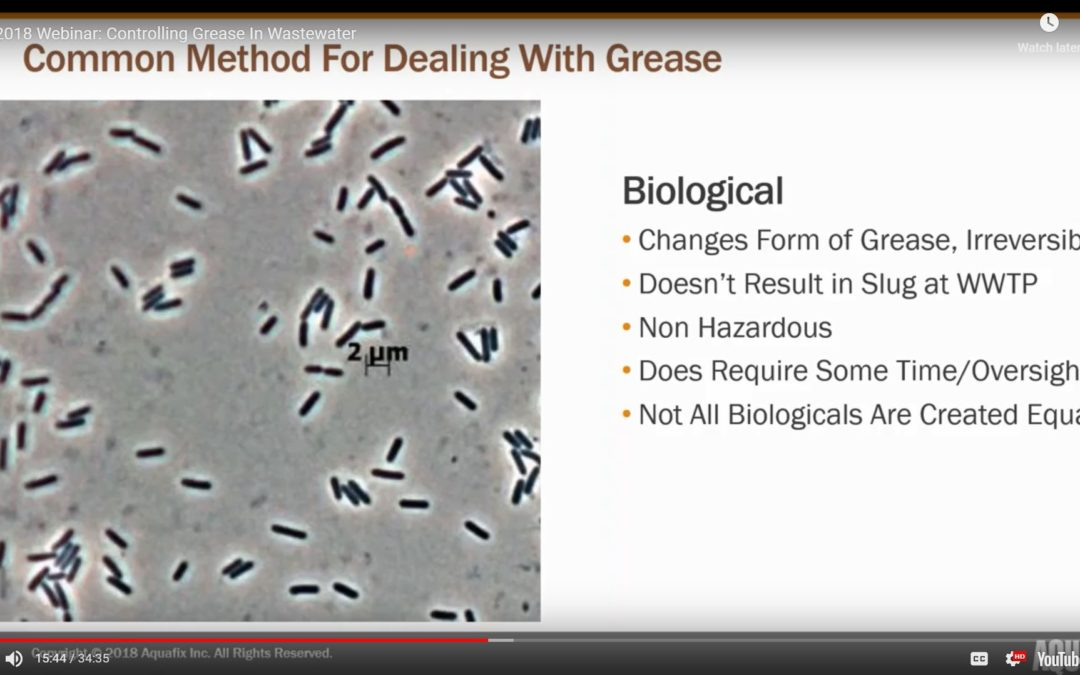 2018 Webinar: Controlling Grease In Wastewater