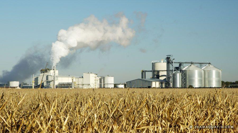 Corn Oils Used For Biofuels – Unique Application