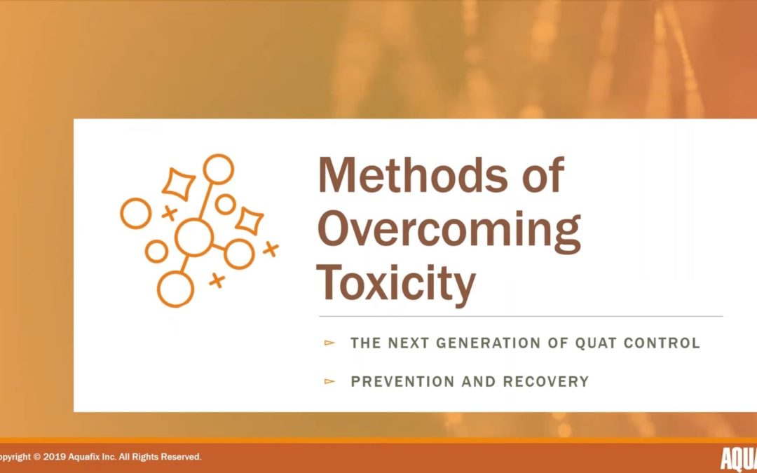 Overcoming Quat (QAC) Toxicity in Wastewater – 2019 Webinar