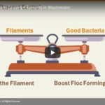 2019 Webinar: Eliminating Foam Causing Filaments
