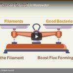 2019 Webinar: Eliminating Foam Causing Filaments