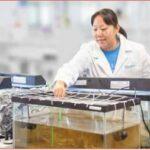 Aquafix Laboratories Sludge Reduction Testing