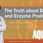 Webinar: The Truth About Bacterial and Enzyme Supplements