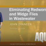 Webinar: Wastewater Midge Flies – Kill Them Dead